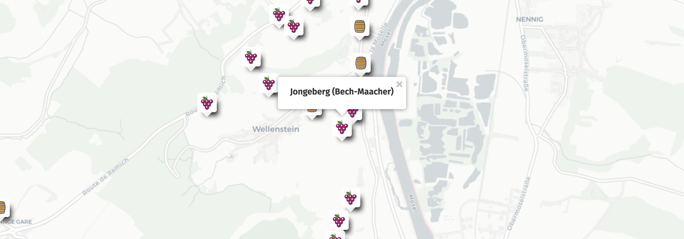 Geolocation of Jongeberg wines in Bech-Maacher